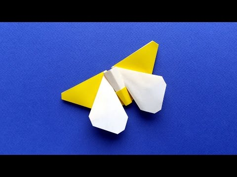 Origami Butterfly Tutorial - 2 Colors Wings and Body (Stéphane Gigandet)