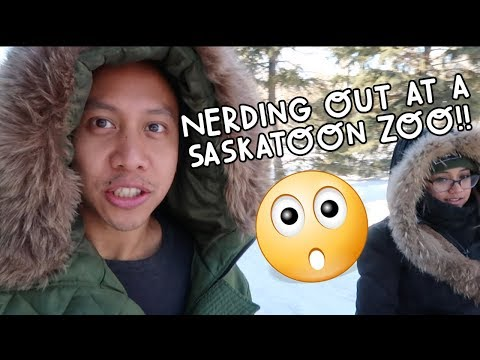 OMG! A SNOW-COVERED ZOO (NERD ALERT)! | Vlog #70