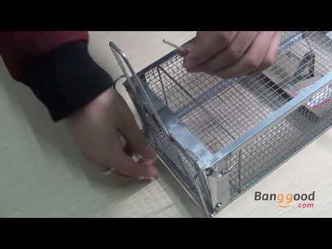 Dual Doors Super High Sensitivity Rat Trap - Banggood.com