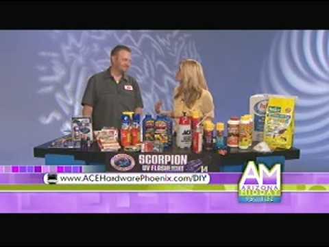 ACE Hardware Phoenix & Channel 12 Midday Segment: Home Scorpion Control