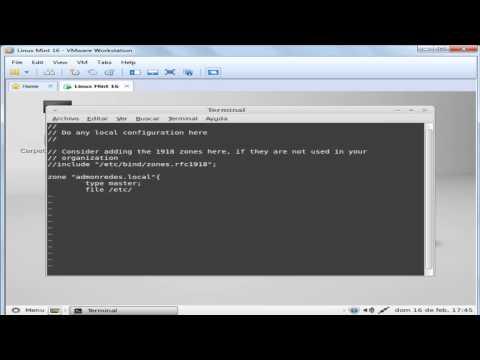Configuración del servicio DNS en Linux Mint 16