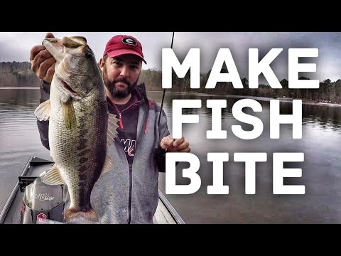 One of the Most Important things in Bass Fishing - How to Fish