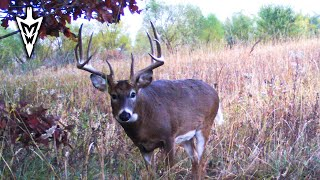 The Best Time To Hunt In October   Midwest Whitetail