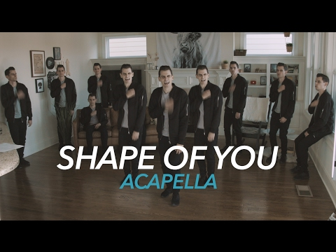 Ed Sheeran - Shape of You  [Acapella]