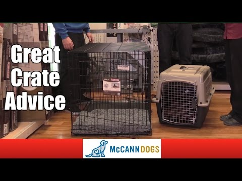 How To Choose A Crate For Your Dog