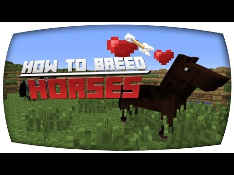 Minecraft Xbox/PS3: How To Breed Horses and Mules  (TU19)