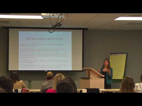 LAF domestic violence training: No Contact Orders and the Gender Violence Act