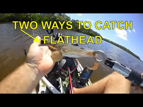 Two Ways to Catch Flathead while fishing from the Kayak |The Hook and The Cook| |