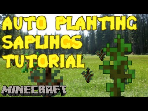 Saplings that Plant Themselves? I can do that! - Minecraft Tutorial