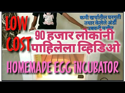 Homemade Egg Incubator (India) part 1