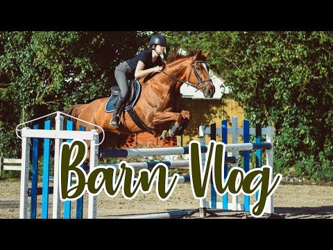 VET SCHOOL CHAT // Barn Vlog
