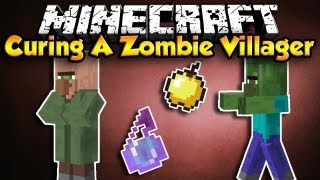 How To Cure A Zombie Villager