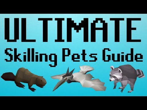 [OSRS] ULTIMATE Skilling Pets Guide (With Comparisons)