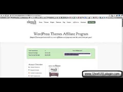Short URL Plugin for Wordpress (Install Walkthrough)