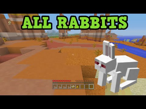 Minecraft PS3 / Xbox 360 How To Find Rabbits + KILLER RABBIT in Survival