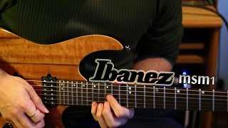 Ibanez RT150 - A New Guitar for Modding - part 1