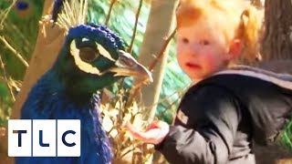 Mimi Visits The Zoo To Pick Up Some Moves | Toddlers And Tiaras