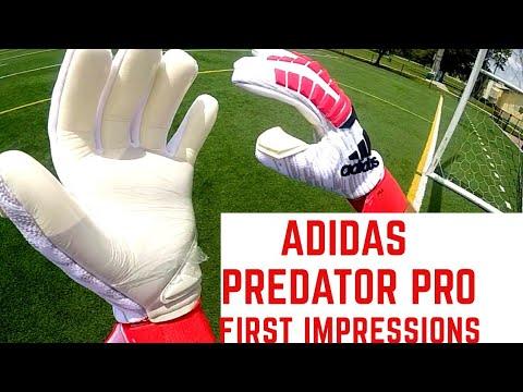 New Adidas Predator Pro Goalkeeper Gloves First Impression