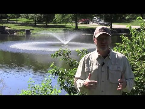 The Benefits Of A Pond Fountain