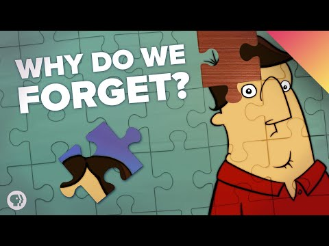 What If You Never Forgot Anything?