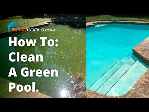 How To: Clean A Green Pool