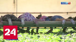 Испытание на выносливость: при сборе урожая в Донском регионе проявляют изобретательность