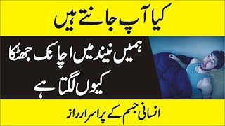 What is Hypnic Jerk in Urdu -  Why Do We Twitch While Asleep - Hypnagogic Jerk