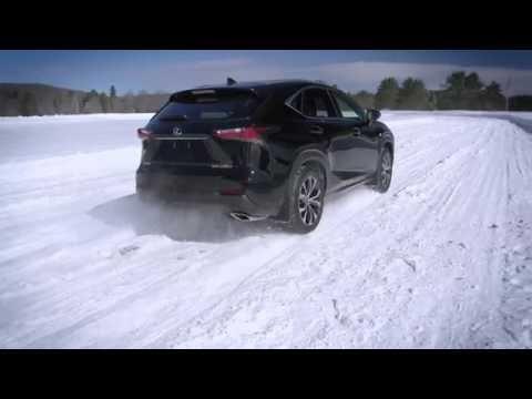 WInter Tires vs All Season Tires - Lexus NX