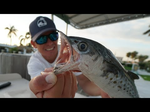 The SECRET to Catching This Fish! Catch Clean Cook- Spanish Mackerel