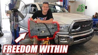 ANOTHER Transmission Swap For White Buffalo... Here's Why