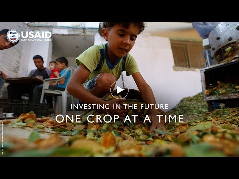 Investing In The Future One Crop At A Time:  USAID West Bank and Gaza