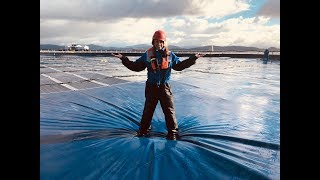 Saving the world from plastic - BBC Click
