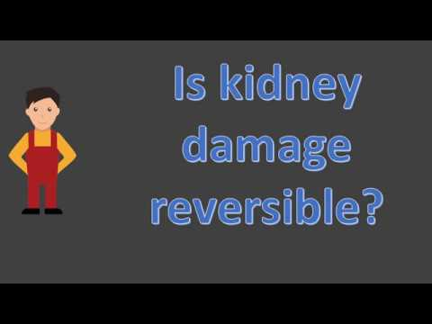 Is kidney damage reversible ?