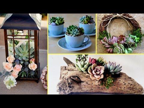 🌵DIY Succulent Plant Terrarium Ideas I Home Decor ideas 2017 I🌵