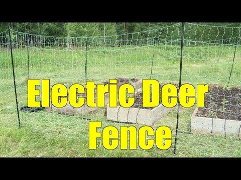 Deer Fence Installed! But Where's the Mulch?