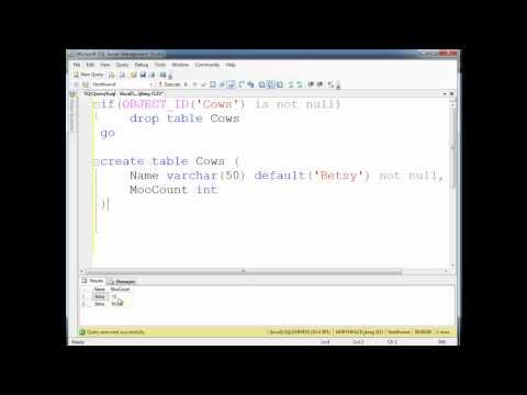 SQL Primary Keys and Identity Columns