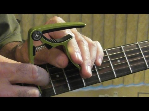 Nordic Essentials Guitar Capo  6 & 12 String Review Green and Blue