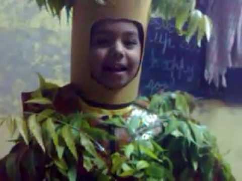 fancy dress competition neem tree