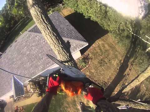 Roping off a limb that's hanging over house (easy breezy) (2013)