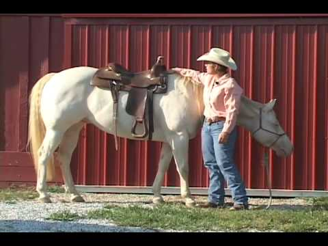 Judging how well your Western Saddle fits your horse.