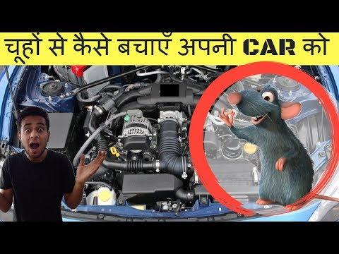 Protect your CAR from RATS: Easy steps |चूहों से कैसे बचाएँ अपनी CAR को