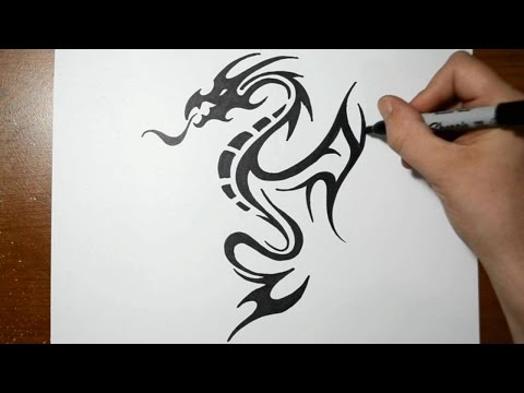 How to Draw a Tribal Dragon Tattoo Design - Sketch 5