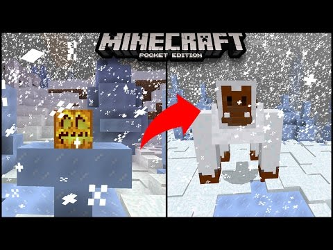 How To Spawn  YETI Boss in Minecraft Pocket Edition (Yeti Mob Addon)|Minecraft PE (Pocket Edition)
