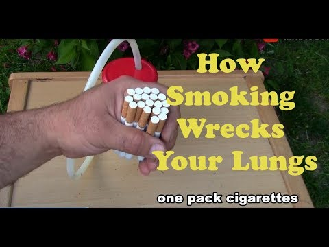 Homemade Cigarette EXPERIMENT / What happens when you smoke one pack Cigarette/ DIY 2018