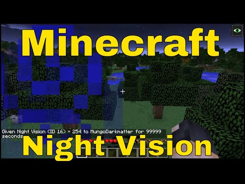 Minecraft Commands - How to Use the Night Vision Command