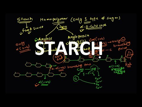 STARCH (Polysaccharide)