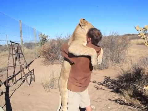 MAN BEST FRIEND IS A LION