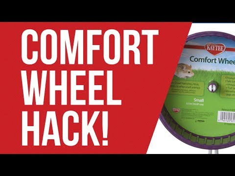 How to Make a Comfort Wheel Quiet~ Maple