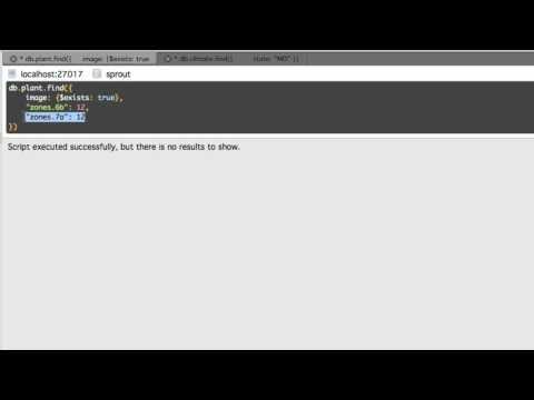 MongoDB Complex Queries Explained