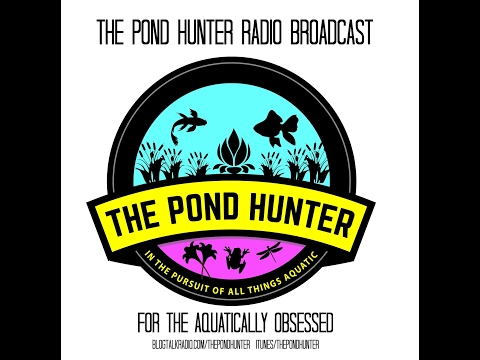 The Pond Hunter Radio Podcast Ep.40 - How To Control String Algae in Your Koi Pond Water Garden